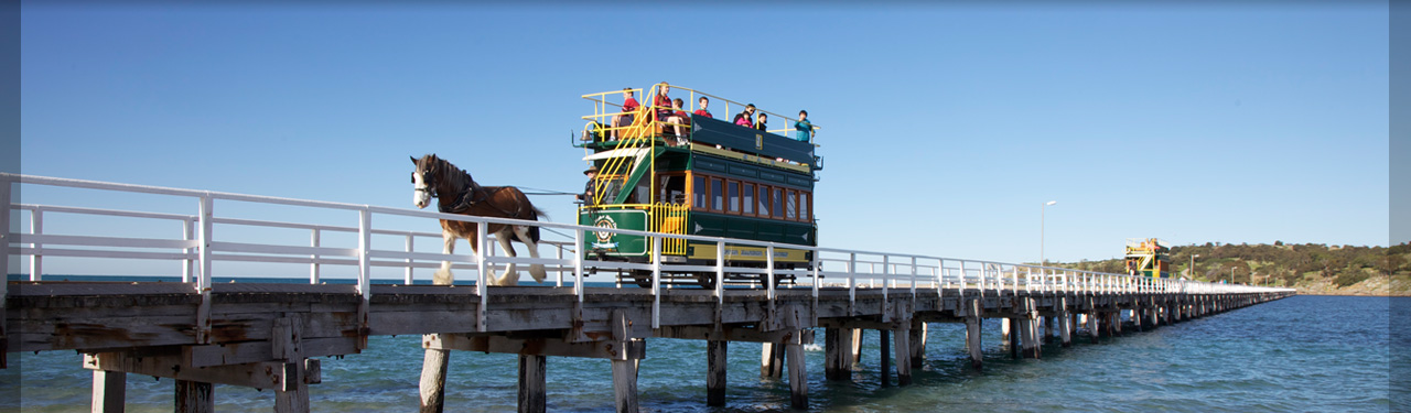 What to do in victor harbour